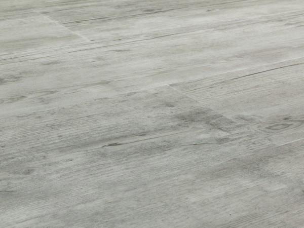 Vinylboden Bismarck Pinie CHECK One 2069