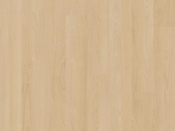 Vinylboden wood Go Buche Light Glue-down Landhausdiele