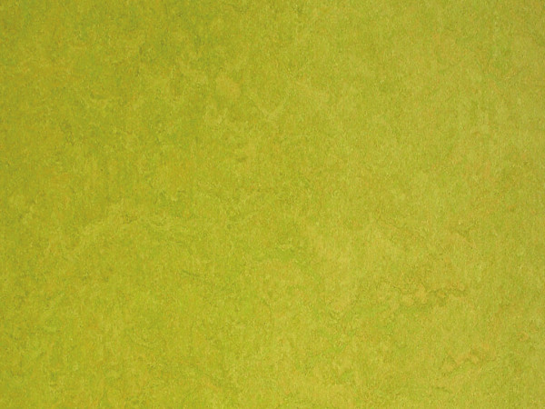 "Linoleum Fertigboden ""Color"" Lime"