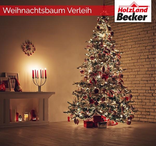hlb_weihnachtsbaum_verleih_17