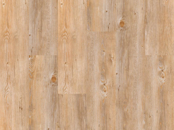 Vinylboden wood Go Eiche Alaska Glue-down Landhausdiele